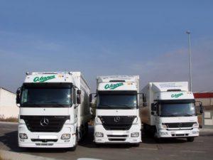 flota de camiones Mercedes para la mudanza de Atance Mudanzas- Servicio de Mudanzas